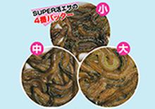 SUPER青虫(青イソメ)