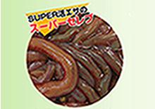 SUPER本虫